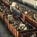 Региональные перевозки лома черных металлов показывают в основном положительную динамику
