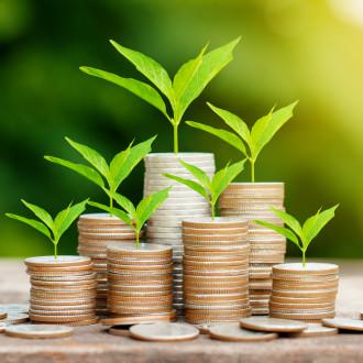 Требования по предоставлению лимитов на финансирование